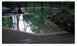 Swimming pool design options advanced pools inc memphis tn for Swimming pool treatment options