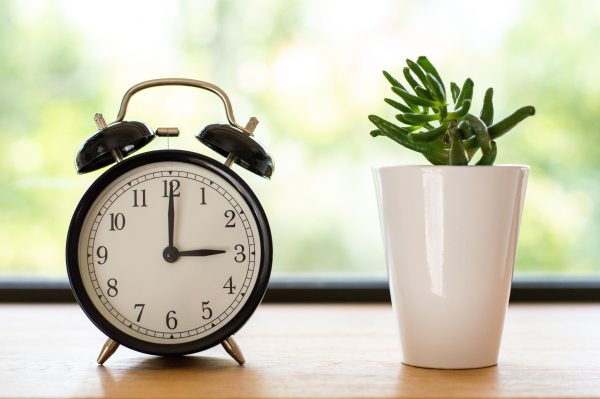 Going away for the holidays? Set a timer