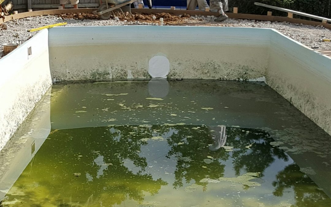 Call a contractor if there is pool algae